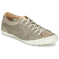 Cipők Női Rövid szárú edzőcipők PLDM by Palladium GRACIEUSE ALX Arany