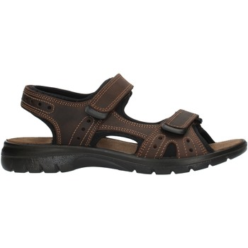 Cipők Férfi Sportszandálok Imac 503370 Brown