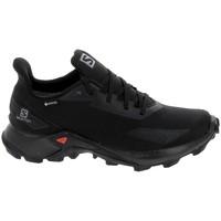 Cipők Rövid szárú edzőcipők Salomon Alphacross Blast GTX Noir Fekete