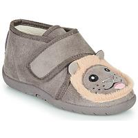 Cipők Gyerek Mamuszok Little Mary LIONVELCRO Szürke