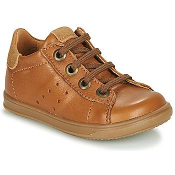 Cipők Fiú Rövid szárú edzőcipők Little Mary DUSTIN Konyak