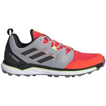 Cipők Férfi Túracipők adidas Originals Terrex Agravic