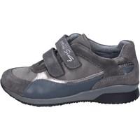 Cipők Lány Rövid szárú edzőcipők Miss Sixty BK180 Szürke