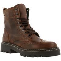 Cipők Női Bokacsizmák Bullboxer 576m80665a Barna