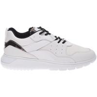 Cipők Férfi Rövid szárú edzőcipők Hogan HXM3710AQ14KFV692C bianco