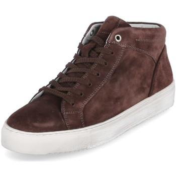 Cipők Férfi Magas szárú edzőcipők Sioux 38192 Barna