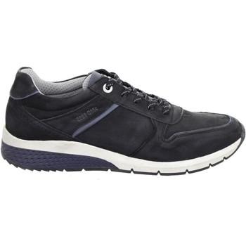 Cipők Férfi Rövid szárú edzőcipők Salamander Tonjo Black Black