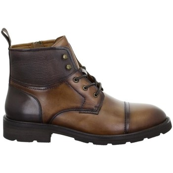 Cipők Férfi Csizmák Salamander Modena Tan Brown Brown