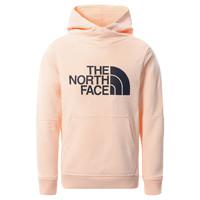 Ruhák Lány Pulóverek The North Face DREW PEAK HOODIE 2.0 Rózsaszín