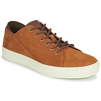 Cipők Férfi Rövid szárú edzőcipők Timberland ADV 2.0 CUPSOLE MODERN OX Konyak
