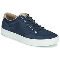 Cipők Férfi Rövid szárú edzőcipők Timberland ADV 2.0 GREEN KNIT OX Kék