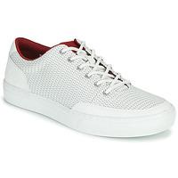 Cipők Férfi Rövid szárú edzőcipők Timberland ADV 2.0 GREEN KNIT OX Fehér