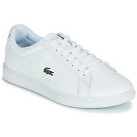 Cipők Női Rövid szárú edzőcipők Lacoste CARNABY EVO BL 21 1 SFA Fehér