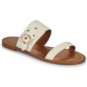 Cipők Női Papucsok Coach HARLOW Elefántcsont