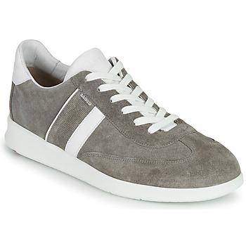 Cipők Férfi Rövid szárú edzőcipők Lloyd BURT Szürke