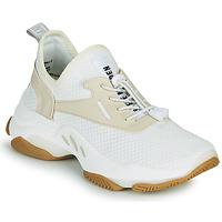 Cipők Női Rövid szárú edzőcipők Steve Madden MATCH Fehér / Bézs