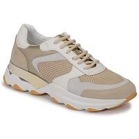 Cipők Női Rövid szárú edzőcipők Lumberjack SWAY Bézs / Fehér
