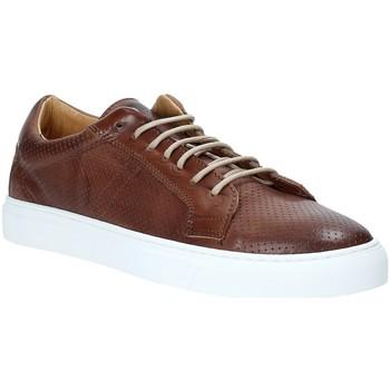 Cipők Férfi Rövid szárú edzőcipők Rogers DV 08 Barna