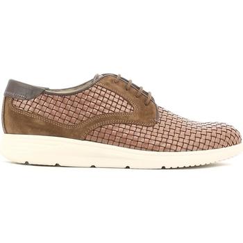 Cipők Férfi Oxford cipők Soldini 19818 I S87 Barna