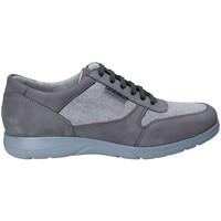 Cipők Férfi Rövid szárú edzőcipők Stonefly 110625 Szürke