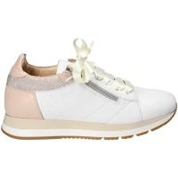 Cipők Női Rövid szárú edzőcipők Exton E18 Fehér