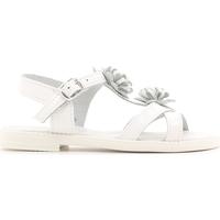 Cipők Gyerek Szandálok / Saruk Lulu LT080056L Fehér
