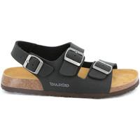 Cipők Férfi Szandálok / Saruk Grunland SB3645 Fekete