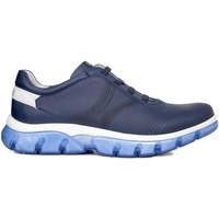 Cipők Férfi Rövid szárú edzőcipők CallagHan 42700 Kék