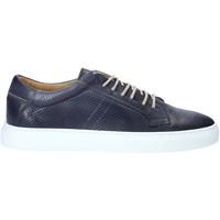 Cipők Férfi Rövid szárú edzőcipők Rogers DV 08 Kék