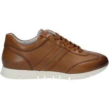 Cipők Férfi Rövid szárú edzőcipők Maritan G 140658 Barna