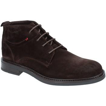 Cipők Férfi Csizmák Rogers 2020 Barna