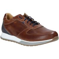 Cipők Férfi Rövid szárú edzőcipők Rogers 5068 Barna