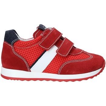 Cipők Gyerek Rövid szárú edzőcipők NeroGiardini P923451M Piros