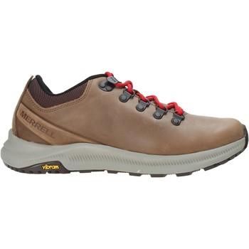 Cipők Férfi Túracipők Merrell J48785 Barna
