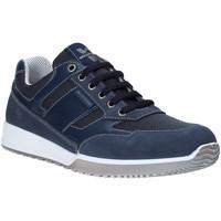 Cipők Férfi Rövid szárú edzőcipők Valleverde 53861 Kék