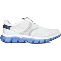 Cipők Férfi Rövid szárú edzőcipők CallagHan 42700 Fehér