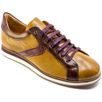 Cipők Férfi Rövid szárú edzőcipők Exton 831 Barna