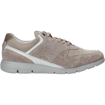 Cipők Férfi Rövid szárú edzőcipők Impronte IM01000A Bézs