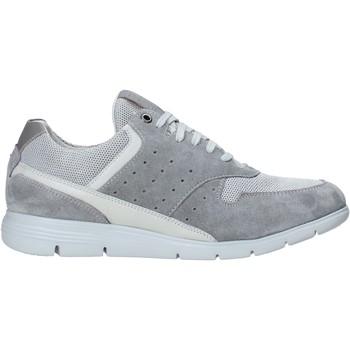 Cipők Férfi Rövid szárú edzőcipők Impronte IM01000A Szürke