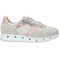 Cipők Női Rövid szárú edzőcipők IgI&CO 5161366 Bézs