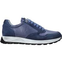 Cipők Férfi Rövid szárú edzőcipők Exton 741 Kék