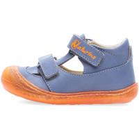 Cipők Fiú Szandálok / Saruk Naturino 2013359-03-1C72 Kék
