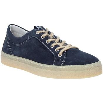 Cipők Férfi Rövid szárú edzőcipők IgI&CO 3134511 Kék
