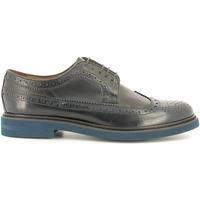 Cipők Férfi Oxford cipők Soldini 13208-F Kék