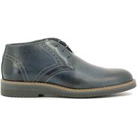 Cipők Férfi Csizmák Rogers 1790B Kék