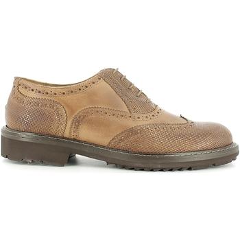 Cipők Férfi Oxford cipők Rogers 2042B Barna