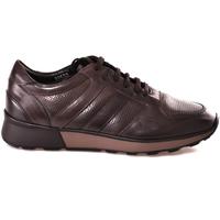 Cipők Férfi Rövid szárú edzőcipők Soldini 20630 2 Barna