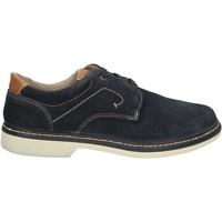 Cipők Férfi Oxford cipők Enval 7885 Kék