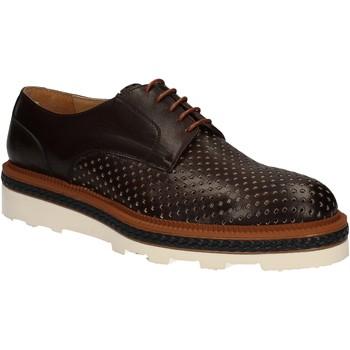 Cipők Férfi Oxford cipők Rogers WILLY Barna
