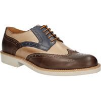 Cipők Férfi Oxford cipők Rogers 1666B Barna